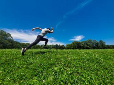運動制御における開ループ系と閉ループ系