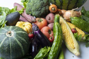 予防栄養学アドバイザーとして本格的に活動を始めます!